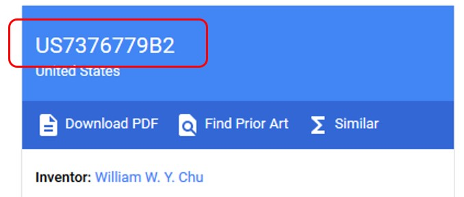 Google Patents Document Number indication